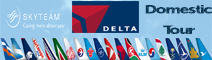 Delta Domestic Hub Tour